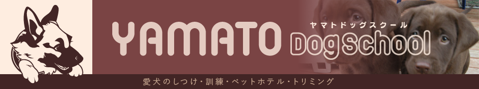 ヤマトドッグスクール